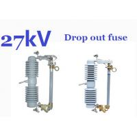 Electric Powerline Drop Out Fuse , Polymer Insulated Type 12kV Fuse Manufactures