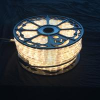 China AC110V / 220V LED rope light 50M roll packing Christmas decorative lighting diameter 13mm Clear PVC housing multi color on sale