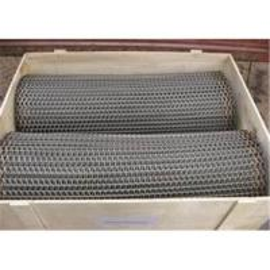 stainless steel conveyer belt Manufactures