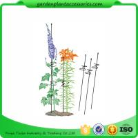 "Single Grow Garden Plant Supports / Spiral Plant Support 4"" Z - Rings Manufactures"