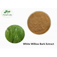 Quality Salicin 15% Natural White Willow Bark Extract Powder Relieve Rheumatism for sale