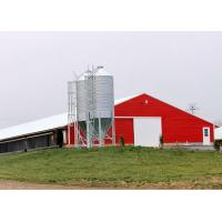 China Pre Built Commercial Steel Structure Poultry House Chicken Rearing Structures on sale