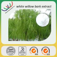 China manufacturer sales high quality 30%salicin white willow bark extract Manufactures