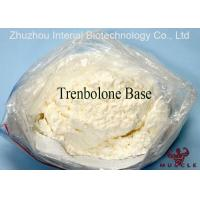Bulking Cycle Steroids Tren Muscle Supplement Trenbolone Base CAS 10161-33-8 Manufactures