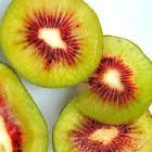 Fresh kiwi fruit Manufactures