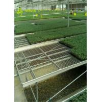 Buy cheap Large Wire Greenhouse Grow Beds And Tables / Garden Center Tables from wholesalers