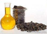 China Canola Oil, Jatropha Oil on sale