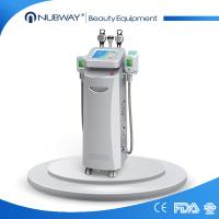 best cooling -15~5℃ good effective fat freezing weight loss 10.4 inch touch screen cryolipolysis Manufactures