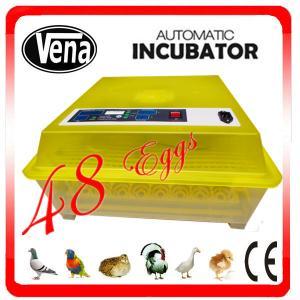 Auto& energy-saving chicken incubator thermostat setting 48 chicken eggs incubator 220V & 110V &12V Manufactures
