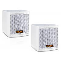 Mini Dual 5 Inch Conference Room Audio System Loudspeaker Box with White Paint Manufactures