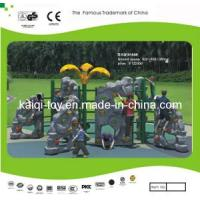 Outdoor Fitness Equipment (KQ10163BA) Manufactures