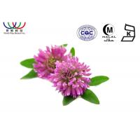 China Anti - Cancer Red Clover Extract  Dark Green Fine Powder EU Standard Pharmaceutical Grade on sale