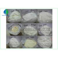 Testosterone Isocaproate Male Muscle Enhancing Steroids CAS 15262-86-9 White Powder Manufactures