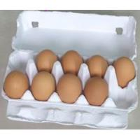 egg carton / egg box  / egg tray