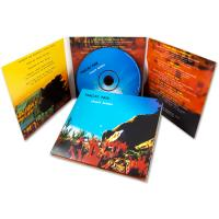 120mm 4.7GB CD Dvd Replication Services With Full Color Printing For Company Brochures Manufactures