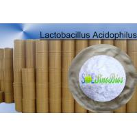 Probiotic Lactobacillus Acidophilus Animal Feed Additives Powder 100BI CFU/G SEM-LA100BI Manufactures