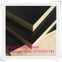 18mm Film Faced Marine Plywood for Construction Manufactures