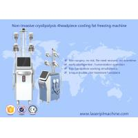 Fat Freeze Cryolipolysis Slimming Machine Vacuum Cavitation Rf Machine Manufactures