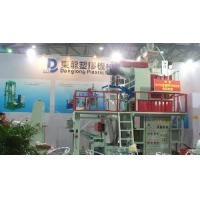 Two Layer PP Film Blowing Machine Manufactures