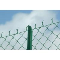 Galvanized & PVC Coated Chain Link Fence Manufactures