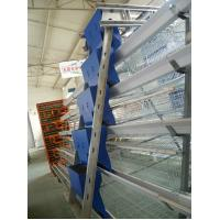 Feeding Equipment for Poultry Manufactures