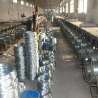 Electro Galvanized Wire Manufactures