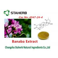Corsolic Acid Banaba Extracts Pure Natural Plant Extracts Cas No.4547-24-4 Manufactures
