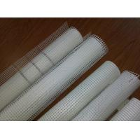 High quality 10mm*10mm Fiberglass mesh Manufactures