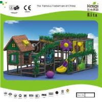 Indoor Playground (KQ10205A) Manufactures
