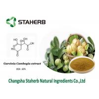Hydroxy Citric acid / Weight losing Garcinia Cambogia extract HCA Manufactures