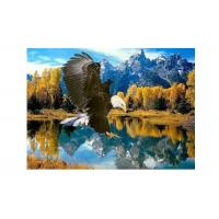 High Definition 3D Lenticular Pictures Stock PET Pictures Offset Printing Manufactures