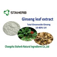 20% 80% ginsenoside Antioxidant Dietary Supplement Material , Organic Ginseng Leaf Extract Manufactures