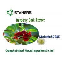 Antioxidation Bayberry Bark Powder Extract Yellow Green Color Myricetin 50%-98% Manufactures