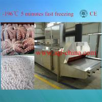 liquid nitrogen quick freezer for whole or sliced mushrooms(approval CE) Manufactures