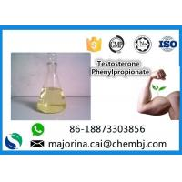 China Testosterone Phenylpropionate Testosterone Anabolic Steroid Maintaining Lean Muscle Mass on sale