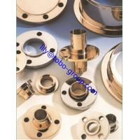 CuNi 90/10 Copper Alloy Flanges  ANSI B16.5 Manufactures