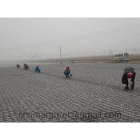 Geogrid for Asphalt Pavement Reinforcement Manufactures