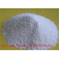 T3 / Liothyronine Sodium Weight Loss Steroids Pain Relief Powder CAS 55-06-1 Manufactures