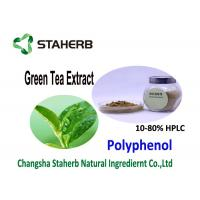 Nature Antioxidant Food Supplements Organic Green Tea Extract 20 - 98% Purity Manufactures