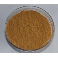 China GMP Supplier 1%-2% DNJ powder from white mulberry leaf extract on sale