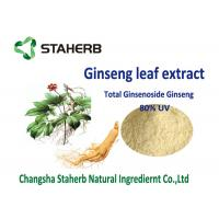 Quality Organic American Ginseng root extract light yellow powder for food field for sale