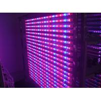 14 Watt Hydroponic LED Tube Grow Lights Blue / Red Light Source , Dia26*900mm Manufactures