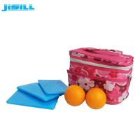 Portable HDPE Plastic Reusable Ultra Thin Ice Pack For Cooler Cold Packs Manufactures