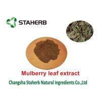 Quality Mulberry Leaf Pure Natural Plant Extracts 1 - DNJ Active Ingredients 12% Powder for sale