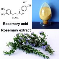 Fine Powder Rosemary Leaf Extract Slightly Water Soluble Carnosic Acid Ursolic Acid Manufactures
