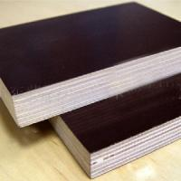 special size film faced  plywood Manufactures