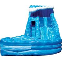 OEM High Speed Race Slide, Cool Adult Inflatable Water Slides For Kids / Adults Manufactures
