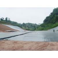 1mm hdpe geomembrane for pond liner Manufactures