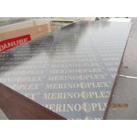 MERINOPLEX FILM FACED PLYWOOD, building construction plywood.form work.made in china. Manufactures