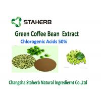 Quality Antibacterial Anti - oxidant Green Coffee Bean Extract Chlorogenic Acid 50% lost for sale